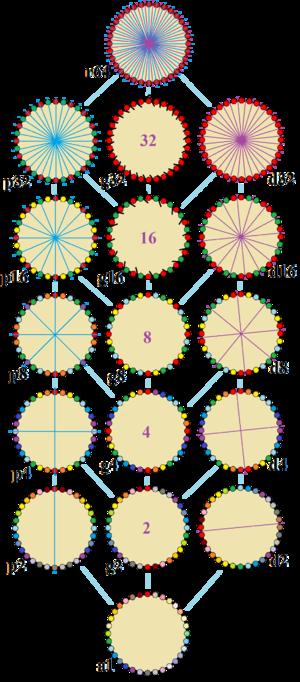 Triacontadigon - Image: Symmetries of triacontadigon
