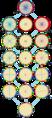 Symmetries of triacontadigon.png