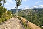Szlak z Rycerki Kolonii na Wielką Raczę.jpg