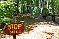 Taborhöhe (725 m ü.A.), Villach, Kärnten 05.jpg