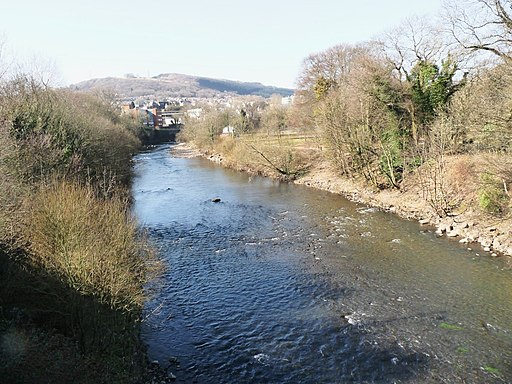Taff view - geograph.org.uk - 1740564