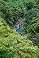 Tama River - panoramio.jpg
