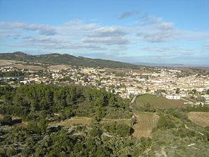 Tavel, Gard - A general view of Tavel