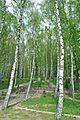 Ternopilske-dzherelo-5869.jpg