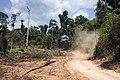 Terra Indígena Cachoeira Seca, Pará (40326429304).jpg