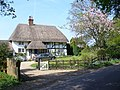 Thatch in Blackmoor - geograph.org.uk - 408215.jpg