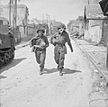 The British Army in Normandy, 1944 B5029.jpg