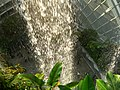 The Fall in the Cloud Forest, Gardens by the Bay, Singapore - 20140513-01.jpg