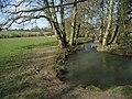 The River Dorn - geograph.org.uk - 370370.jpg