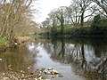 The River Tees - geograph.org.uk - 1254047.jpg
