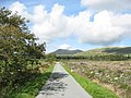 The Road Past the Coed Dafydd Clear Fell - geograph.org.uk - 249267.jpg