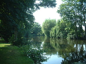A tree-lined section of the River Wensum as it...