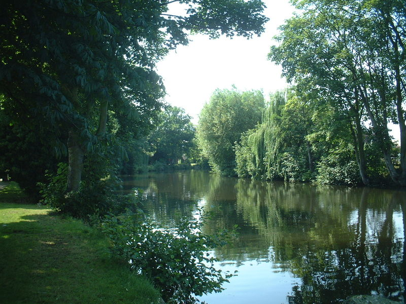 File:The Wensum under trees.JPG