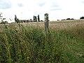 The Wherryman's Way - footpath marker - geograph.org.uk - 1413265.jpg