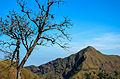 Thong Pha Phum2.jpg
