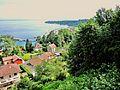 Thonon-les-Bains. Le port vu de la ville haute. (1). 2015-06-21.JPG