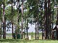 Tomahawk Lake - panoramio.jpg