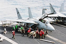 Image illustrative de l'article Grumman F-14 Tomcat