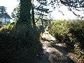 Track, near Lavender House Hotel, Ashburton - geograph.org.uk - 1068084.jpg