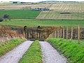 Track to Hilton Farm Cottage - geograph.org.uk - 632701.jpg