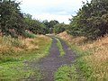 Trackbed of former Otley-Pool railway - geograph.org.uk - 42287.jpg