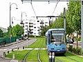 Tramway de Rouen - Plate-forme engazonnée.jpg