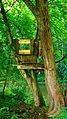 Tree House - panoramio.jpg
