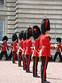 Trooping the Colour 2006 - P1110416 (169190509).jpg