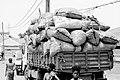Truck load (19552515521).jpg