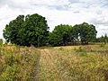 Tula region Near Shchyokino IMG 5120 1280.jpg
