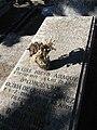 Tumba de Luis Simarro, cementerio civil de Madrid.jpg