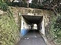 Tunnel under West Kyushu Line on west side of Tabira-Hiradoguchi Station 3.jpg