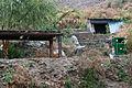 Turkmen Studfarm - Flickr - Kerri-Jo (19).jpg