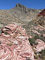 Turtlehead Peak from Gateway Canyon 1.jpg