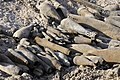 U.S., Iraqi Troops Find Unexploded Ordnance Outside Baghdad DVIDS202488.jpg