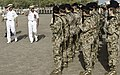 US, International Forces commemorate Veterans Day in Africa 111111-F-VK137-262.jpg