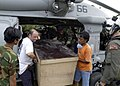 US Navy 050110-N-1229B-130 Foreign aid workers and military personnel work together to unload a box of relief supplies from an MH-60S Knighthawk helicopter.jpg