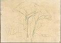 Umbrella Pines and Buildings (Smaller Italian Sketchbook, leaf 26 recto) MET DP269435.jpg