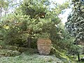 Un colt de rai, Manastirea Prislop - panoramio.jpg