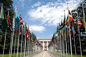 International relations - Image: United Nations Flags cropped