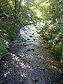 Upstream Bervie Water - geograph.org.uk - 1387736.jpg