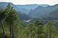 Valle del río Mundo con El Quejigal.JPG