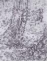 Van Gogh - Bäume mit Efeu und Bank im Garten des Hospitals Saint-Paul.jpeg