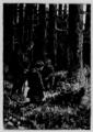 Verne - César Cascabel, 1890, figure page 0128.png