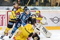 Vienna Capitals vs Fehervar AV19 -141.jpg
