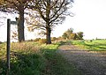 View north-west along Hickling Lane - geograph.org.uk - 1586488.jpg
