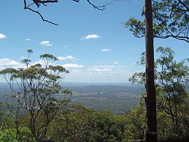 View North From The Knoll Tamborine MountainJPG