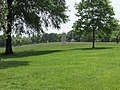 View of Chickamauga Battlefield as seen from the Brotherton Farm.jpg