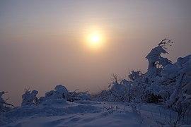 Vihorlat (v zime) 055.jpg