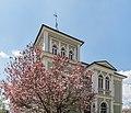 Villach Perau 10.-Oktober Straße 22 Magnolienblüte 23042021 0834.jpg